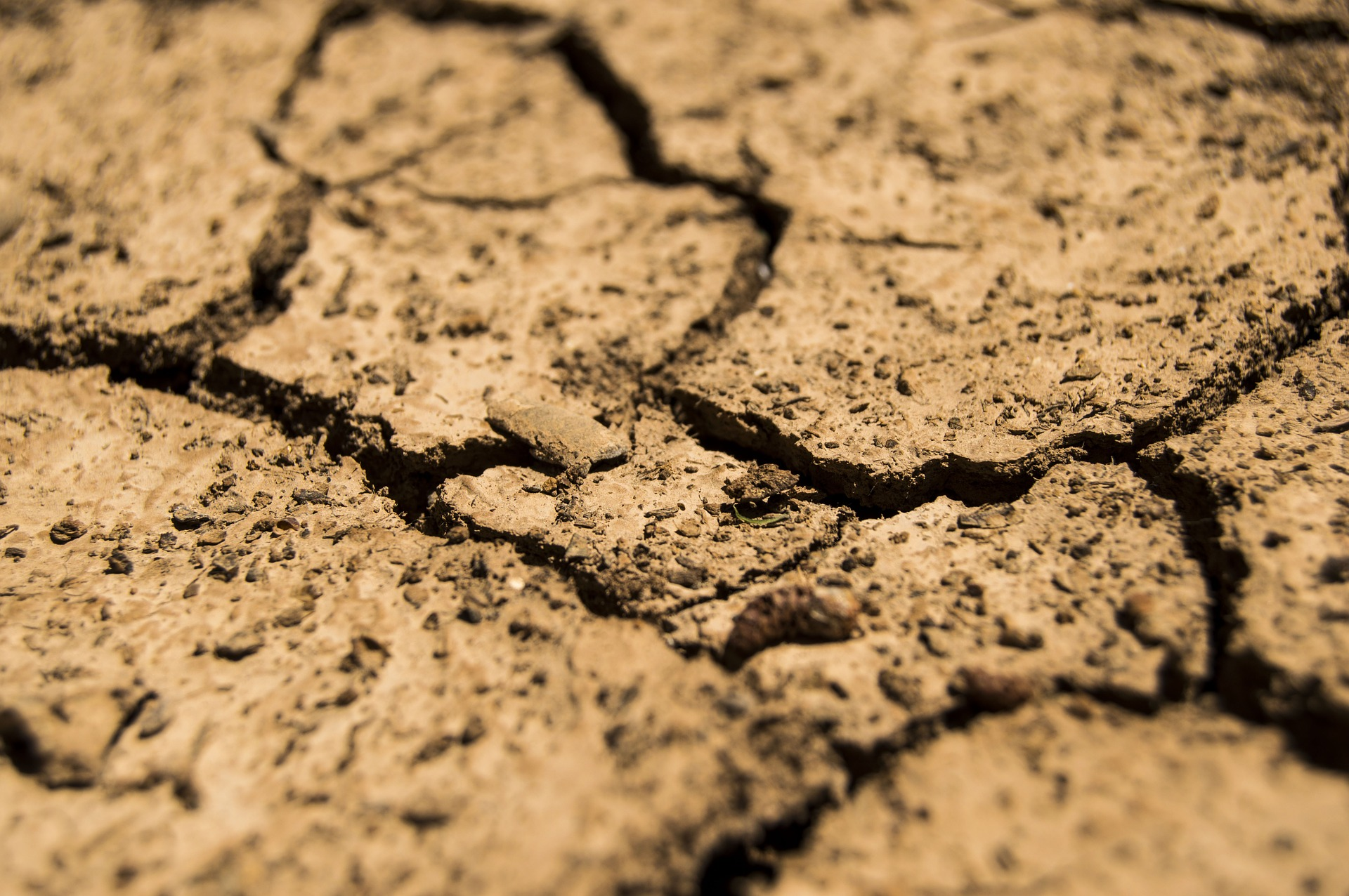 Drought 780088 1920